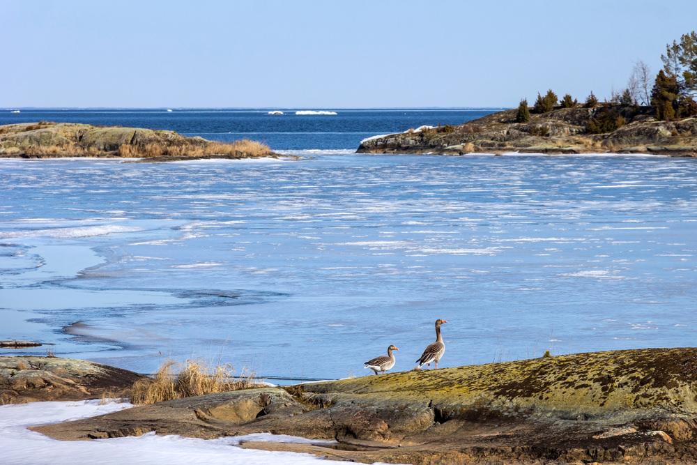 Ezers, Zviedrija, Lielākais ezers Zviedrijā