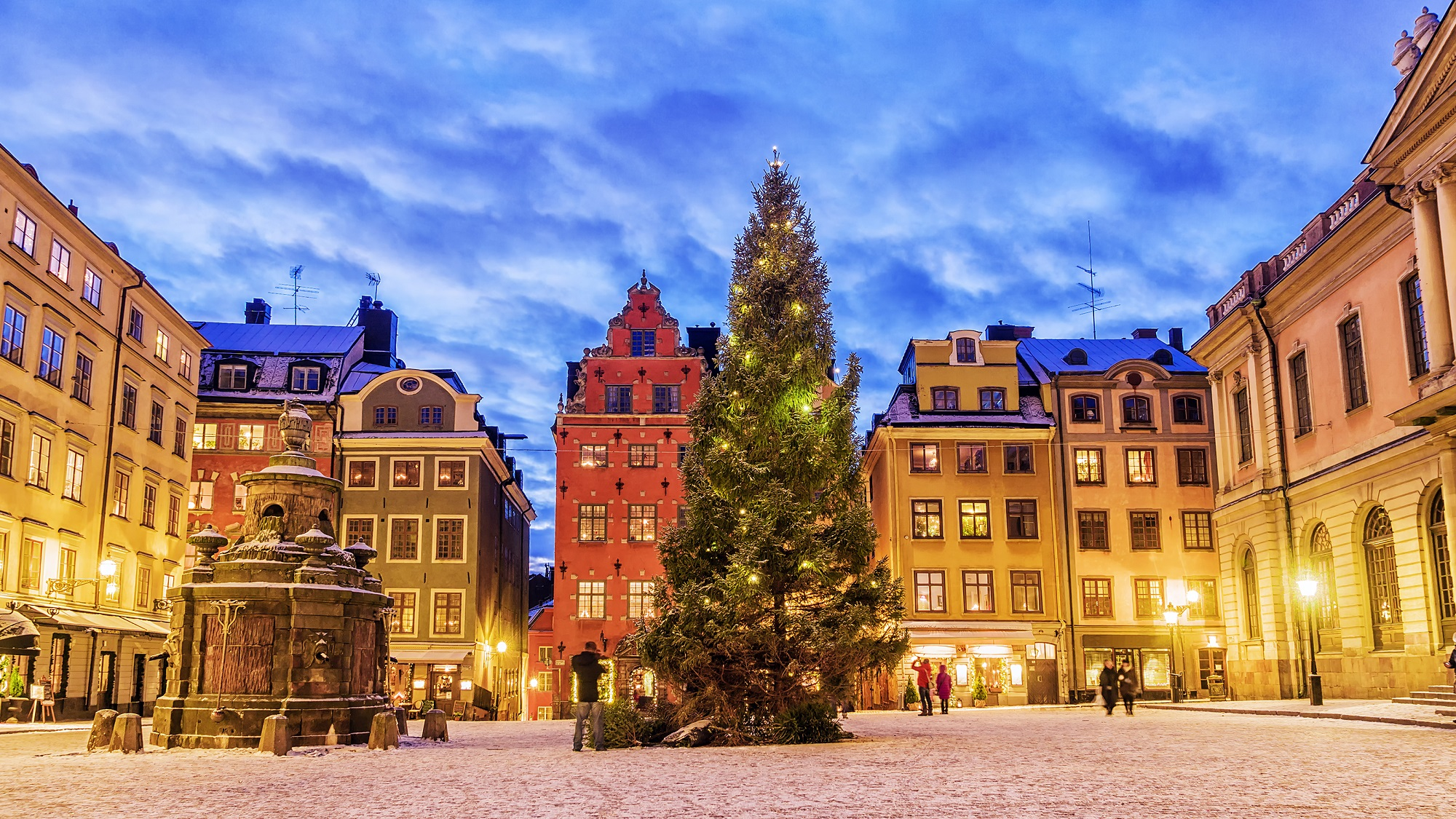 Stokholma, Zviedrija, Gamla Stan, Vecpilsēta, pilsētas laukums, ziemassvētku egle, ziemassvētku tirdziņi